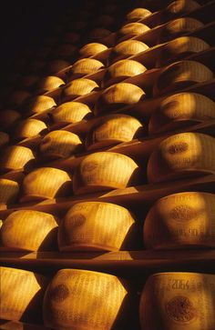 I'm in heaven!  Emilia-Romagna Parmigiano Reggiano the best cheese in the world
