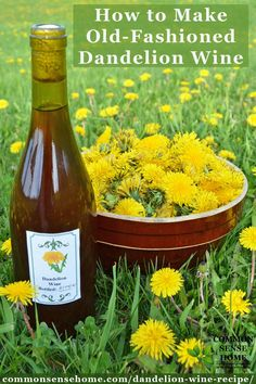 "Enjoy your field full of dandelion flowers with this homemade dandelion wine recipe from the book ""Dandelion Medicine"". This foraged food wine is ""therapeutic to the kidneys and digestive system"". Don't forget to watch out for the mistake that can ruin your batch of wine!"
