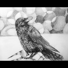 Did you guys know that a Raven mates for life? It's crazy how a bird can be more faithful than a human. There's no love lost in this world we all call home........ #raven #ravendrawing #ravenbird #art #artistsoninstagram #artistic #instagood #instagram #instaartist #drawingoftheday #drawings #sketchbook #sketch #animalkingdom #animals #animalart #animaladdicts #illustrations #illustrator #