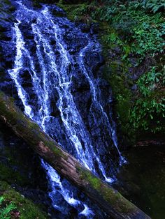 Cataract Falls, Mt Tamalpais State Park, CA, USA