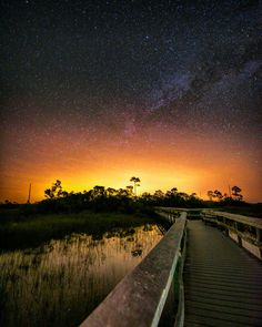Mahogany Hammock, Everglades National Park