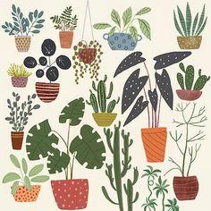 Botanical Illustration Home Decor Pots Green Poster Plant Painting, Botanical Illustration, Green, Pots, Home Decor, Imagination, Interior Design, Home Interior Design, Cookware