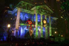 Disneyland in November: Terrific Reasons to Visit