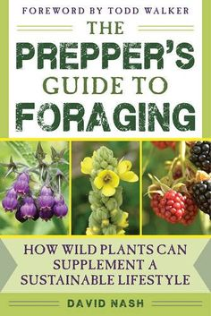 The Prepper's Guide