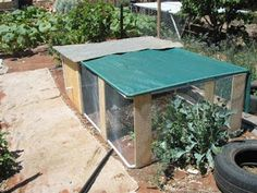 The Frugal World of Doc: A Simple Chook Tractor