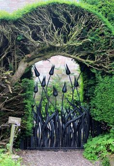 Tulip wrought iron garden gate.  Just so different, and the TREE!