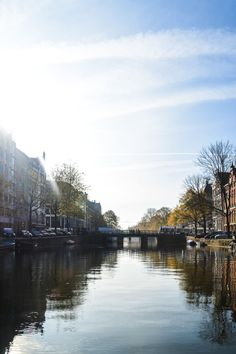 Unique Things To Do Visiting Amsterdam (38)