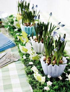 La llegada de la Primavera, nos invita a renovar el aspecto de nuestro hogar con colores frescos y variados. Y es que darle otro aire se puede conseguir de muy fácil manera, te invitamos a encontrar las opciones en nuestro sitio www.clementine.com.uy