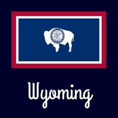 Wyoming State Flag | State Emblems | Wyoming state, Wyoming