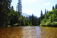 Yosemite, CA USA