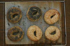 Bagel - der Lochgott - Blog: Gruß aus der Küche - derStandard.at › Lifestyle