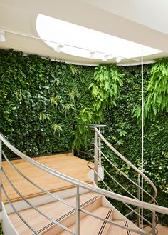 So refreshing! A whole wall of fresh oxygen. Amazing!