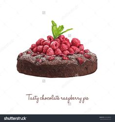 Hand drawn delicious vector chocolate pie with raspberries and mintwatercolor, berry, dessert, illustration, pastry, food, isolated, hand, design, fruit, bakery, painted, cake, sweet, sketch, background, white, painting, restaurant, cream, fresh, apple, blueberry, tasty, cafe, menu, citrus, bake, muffin, piece, blackberry, strawberry, gourmet, cherry, crust, currant, cheesecake, cinnamon, pumpkin, meat, wooden, closeup, table, homemade, healthy, brown, fall, tart, meal, beef