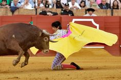 Bullfighter #MorantedelaPuebla http://madridbullfighting.com/