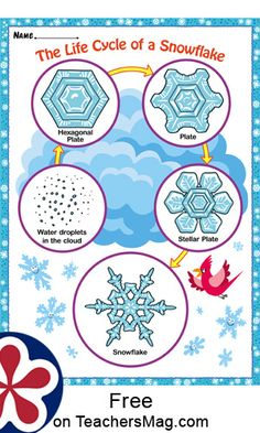 The Life Cycle of a Snowflake This printable makes a stellar hand-out to give students and then discuss the life cycle of a snowflake. It has five steps that loop in a never-ending fashion! Snow Activities, Montessori Activities, Science Activities, Science Topics, Cycle For Kids, Snow Theme, Teaching Themes, Preschool Books, School Themes