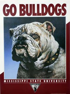 Mississippi State University - Go Bulldogs