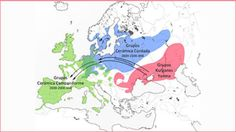 ❤ =^..^= ❤   Researchers have identified a massive migration of Kurgan populations (Yamna culture) which went from the Russian steppes to the centre of Europe some 4,500 years ago, favouring the expansion of Indo-European languages throughout the continent.