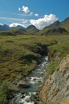arctic refuge Alaska | Arctic Refuge | Arctic/Alaska | Pinterest