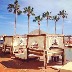 Cabo. Captured by tuulavintage on Instagram.