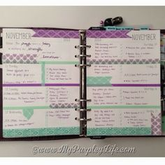 This is so cute! I like how she used washi tape to make separation spaces for each day. My Purpley Life: My Filofax Week #46