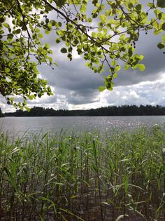 Summer in Finland. Lake Pyhäjärvi. Photo by Virpula