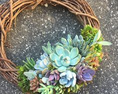 "14"" Succulent Wreath (made to order)"