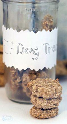 Oatmeal Banana Homemade Dog Treats Recipe #DogTrainingObediencePetCare Puppy Treats, Diy Dog Treats, Healthy Dog Treats, No Bake Dog Treats, Horse Treats, Dog Biscuit Recipes, Dog Treat Recipes, Dog Food Recipes, Recipe Treats