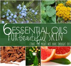 I tend to talk about the same handful of essential oils don't I? I've made my love for geranium, lavender, cypress and carrot seed essential oil pretty apparent! I thought today we would explore ...