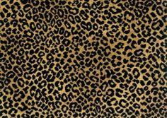 Stanton Lake Jaguar Exotic Animal Print Carpet and Rugs