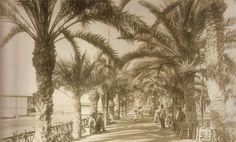 Detalle de El Paseo de los Martires en la primera década del siglo XX. Farolas de gas y arcos de hierro que más tarde tendrían bombillas. A la izquierda, el Club de Regatas.