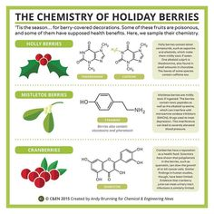 Periodic Graphics: The Chemistry Of Holiday Berries Chemistry Notes, Science Chemistry, Science Facts, Organic Chemistry, Physical Science, Science Lessons, Science Education, Science Experiments, Science And Technology
