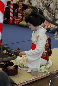 Geisha conducting tea ceremony at Baikasai Festival, Kyoto Samurai, Japanese Geisha, Japanese Beauty, Japanese Art, Look Kimono, Memoirs Of A Geisha, Japanese Tea Ceremony, Art Japonais, Nihon