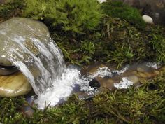 Een miniatuur waterval vijver of rivier toevoegen aan uw