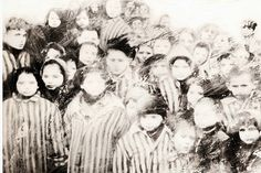 Giornata della Memoria: parlare della Shoah ai bambini attraverso libri e film - ilPrimoSensoSi avvicina la ricorrenza del 27 gennaio, Giornata della Memoria. Molti genitori si chiedono da quale età sia opportuno affrontare il tema della Shoah con i bambini. Raccogliamo qui le più interessanti bibliografie con libri per parlare della Shoah ai bambini da 5 anni in poi.