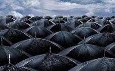 photography rain | Saturday, September 11, 2010