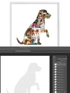 Photo Collage Template, Stationery Templates, Dog Photos, Photo Art, Software, Photoshop, Pets, Animals And Pets