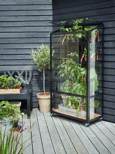 Royal Well City Garden, zwart, veiligheidsglas 3mm kopen bij Azalp.nl