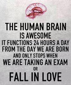 The human brain is awesome. It functions 24 hours a day from the day we are born and only stops when we are taking an exam or fall in love.