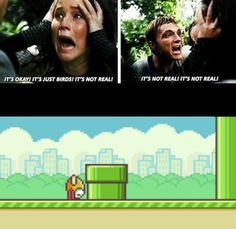 Hunger Games and Flappy Bird humor Hunger Games Humor, Hunger Games Catching Fire, Really Funny, The Funny, Jenifer Lawrence, Flappy Bird, It Goes On, Have A Laugh, My Tumblr