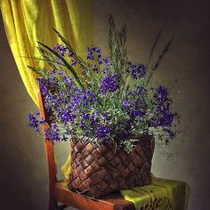 """For everything Home Decor! Please go to the """"About"""" section of the community to read the rules before posting! Still Life Photos, Life Photography, House Colors, Community, Plants, Home Decor, Masters, Decorating Ideas, Google"""