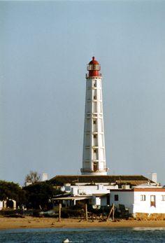 Ria Formosa, Barra de Faro-Olhão Ldg Lts Common rear, Cabo de Santa Maria, Portugal