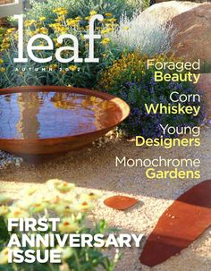 Digital Delight – Leaf Magazine
