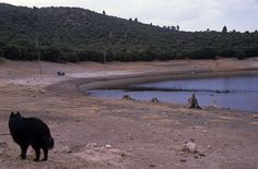 Campsite Dayet Iffer Lake - Morocco 1988