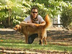 Ryan Reynolds you get sexier by the minute
