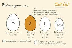 chefdaw - Выбор куриных яиц