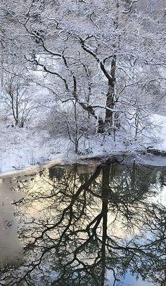 Halves Columbia River Gorge, Oregon, Washington: Multnomah Falls under an Autumn Moon, Columbia River Gorge National Scenic Area. Winter Szenen, I Love Winter, Winter Magic, Winter Time, Winter Sunset, Foto Picture, Snow Scenes, Winter Pictures, Winter Beauty