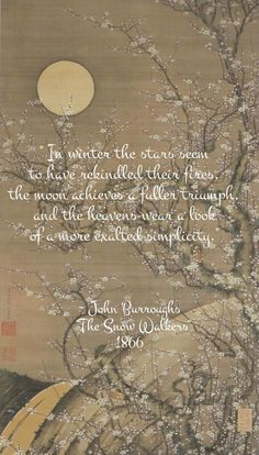 QUOTE: Published in The Atlantic Monthly, March eight pages of beautiful prose about Winter and the creatures that live in the snow. Winter Solstice Quotes, Winter Quotes, Snow Quotes, Dark Quotes, Summer Solstice, I Love Snow, I Love Winter, Season Quotes, Winter Magic
