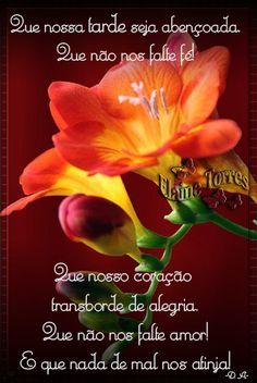 Cartões Elaine Torres Messages, Cards, Best Wishes Messages, Good Afternoon, Photo Galleries, Motivation Quotes, Roses, Flowers, Mime Artist