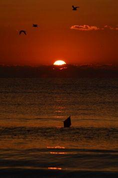 Rasarit pe malul marii Celestial, Sunset, Outdoor, Outdoors, Sunsets, Outdoor Games, The Great Outdoors, The Sunset