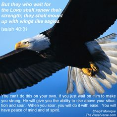"Isaiah 40:31 ""but they who wait for the Lord shall renew their strength; they shall mount up with wings like eagles; they shall run and not be weary; they shall walk and not faint."""